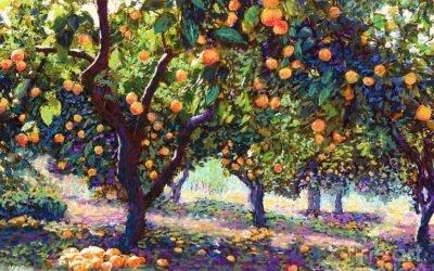 Żyjemy by wydawać dobre owoce