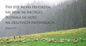 Czy Pan jest moim Pasterzem